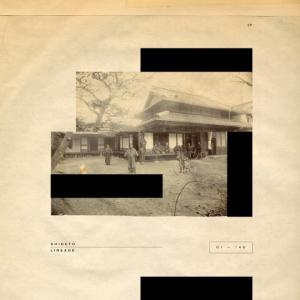 SHIGETO-LINEAGE